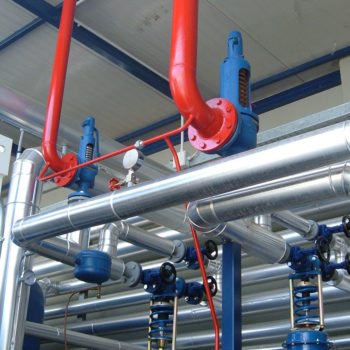 Steam distribution plant
